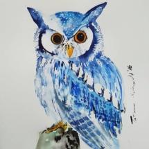 Blaue Eule 120,00 € Größe: 40x40 cm Original