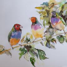 Paradies trio 150,00 € Größe: 50x70 cm Original