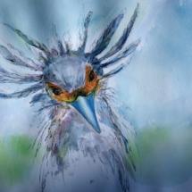 Sekretärvogel 250,00 € Größe: 50x70 cm Original Verkauft (in Privatsammlung)
